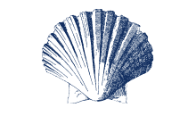 shellfish-wholesale-supplier